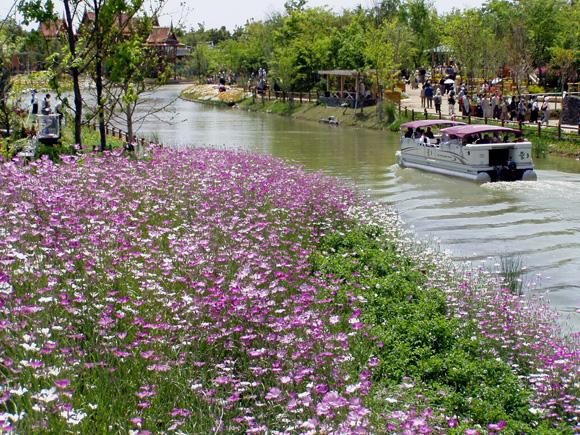 いろどり運河