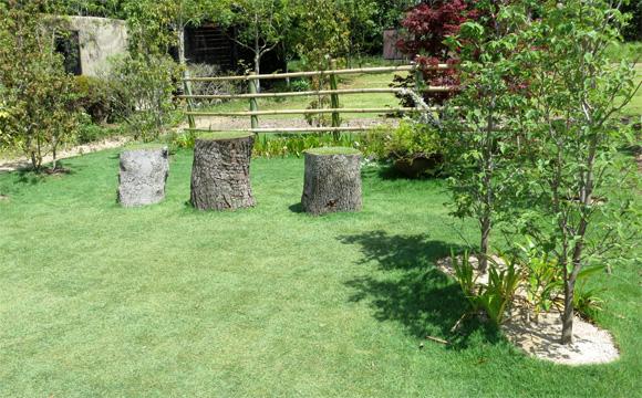 再生と芝の庭