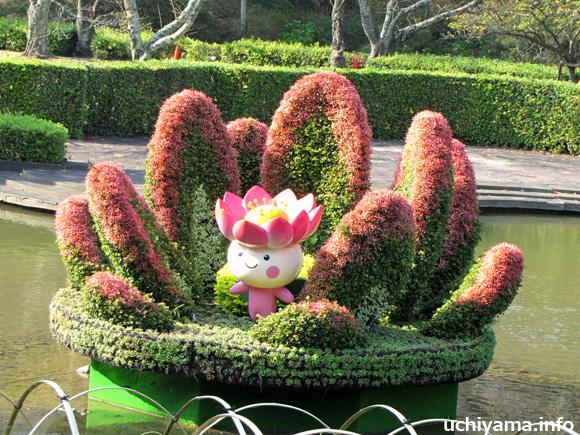 妖精の住む花・オオガハス