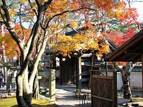 修禅寺の紅葉