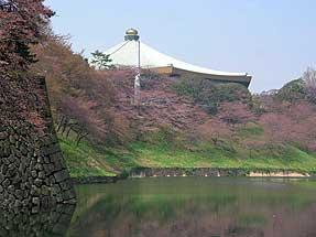 武道館を望む