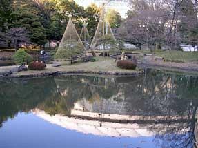 水面に東京ドームが写る