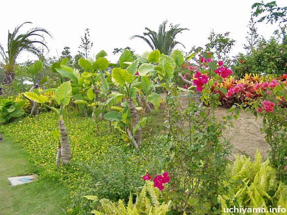 ベリーズ庭園