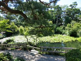 清水邸庭園