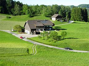 ハルシュタットへの道風景
