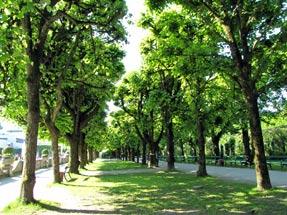 ミラベル宮殿の庭園