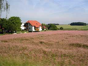 チェコへの道