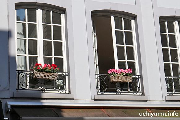 ブルージュ・窓際の花
