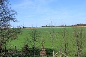 ブリュセル〜ブルージュの道風景