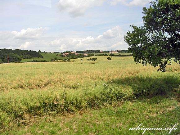 カルルシュテイン城への道風景