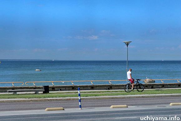 タリン〜ピリタ海岸の道風景