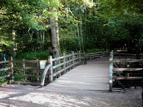 プーの棒投げ橋