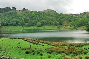 湖水地方の道風景