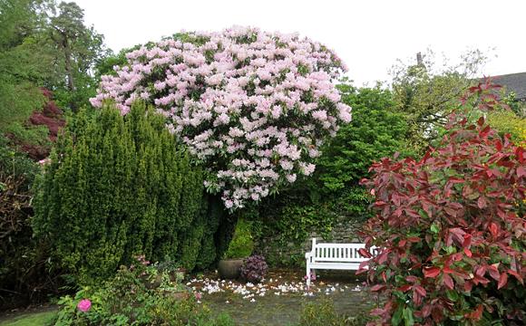 ライダルマウントの庭園