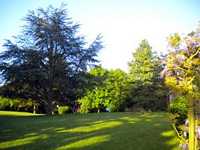 ノボテル ブロワの庭