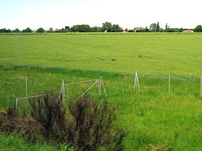 ボルドーへの道風景