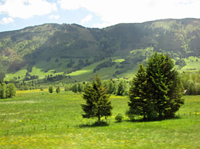 ヴィース教会への道風景