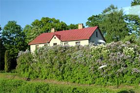 ラトビア国境周辺の景観