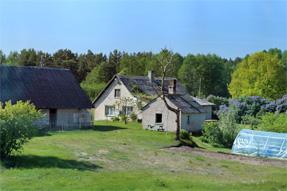 ラトビア〜エストニアの道風景