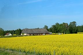 ラトビアへの道風景
