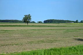 ワルシャワ〜アウグストゥフの道風景
