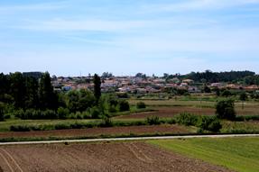 アヴェイロからの道風景