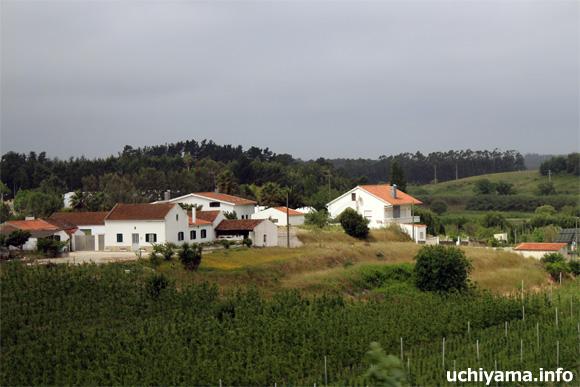 アルコバサからの道風景
