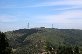 オビドスからの道風景