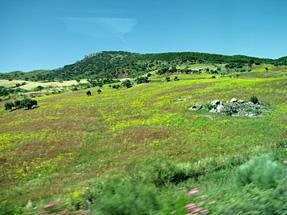 セビリアへの道風景