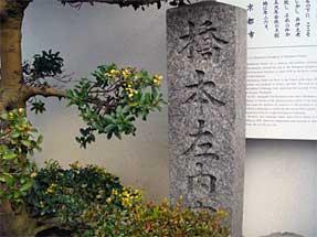 堀川通・橋本左内寓居跡