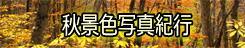 「秋景色写真紀行」 → 写真紀行・旅おりおり
