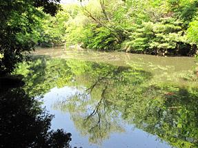 東京・三四郎池