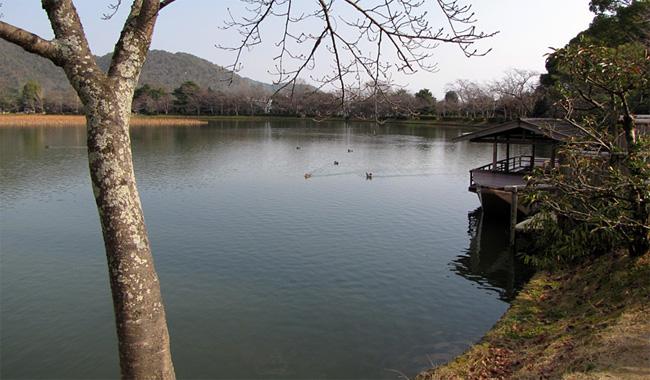 京都・広沢池