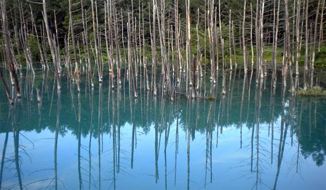 北海道・青い池