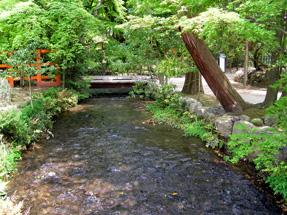 奈良の小川