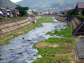 太鼓谷稲成神社から眺望した津和野川
