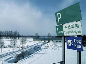 道東自動車道