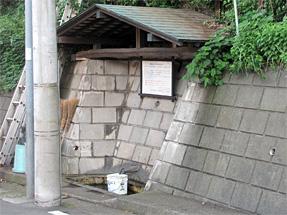ワシン坂・湧水