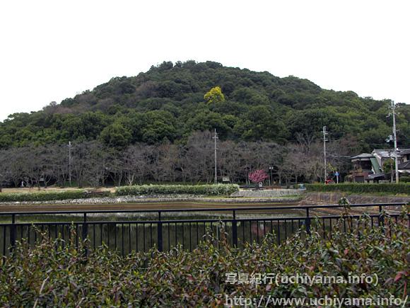 耳成山公園から見る耳成山