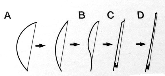 ヴァイオリン・弓の形