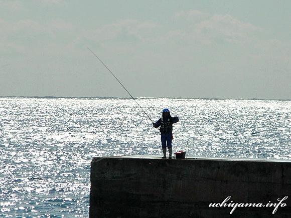 伊豆・伊浜漁港