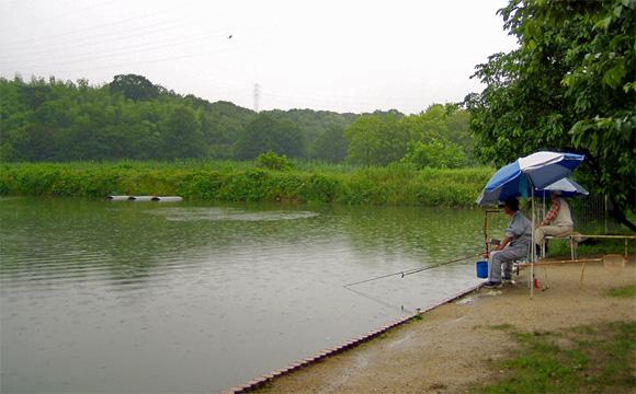 公園 山田 池