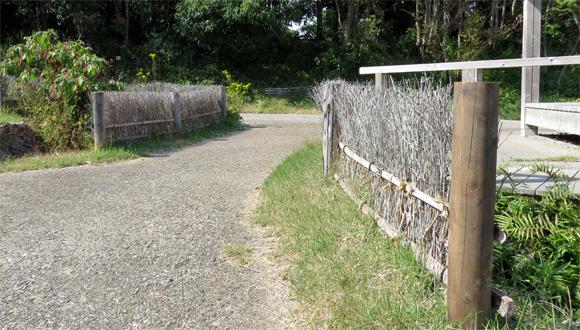 浜名湖ガーデンパークの垣根