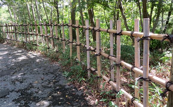 浜名湖ガーデンパークの垣根・四つ目垣