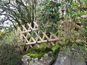 京都市内の垣根