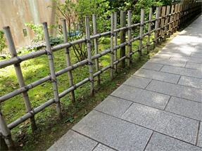 了仙寺の垣根