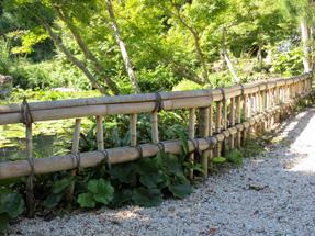 清水邸庭園の垣根