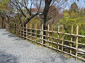 東福寺の垣根