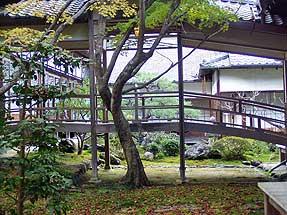 常寂光寺の垣根