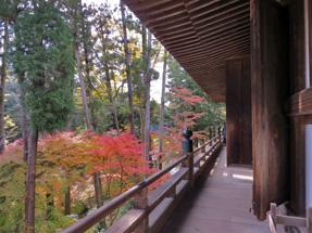 石山寺・本堂